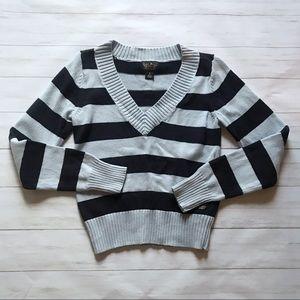 Polo Jeans Ralph Lauren Blue Striped Sweater Sz L
